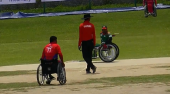 Wheelchair_cricket1.png
